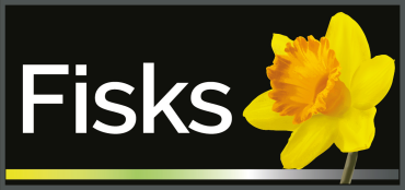 Fisks Benfleet : Letting agents in  Essex